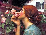 [El alma de la rosa o mi dulce rosa de John William Waterhouse]